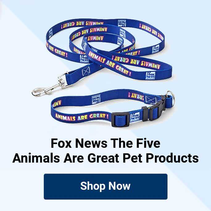 Fox News Animals Are Great Bundle